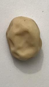 A large vegetable seed: Pea