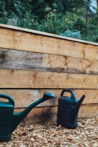 Square Foot Gardening sometimes Uses Raised Beds - More gardening myths?
