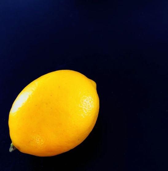 Lemons can be grown in the UK