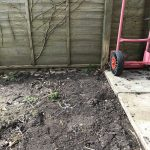 "How to Convert a Lawn or Patio into a New ""No Dig"" Veg Garden"